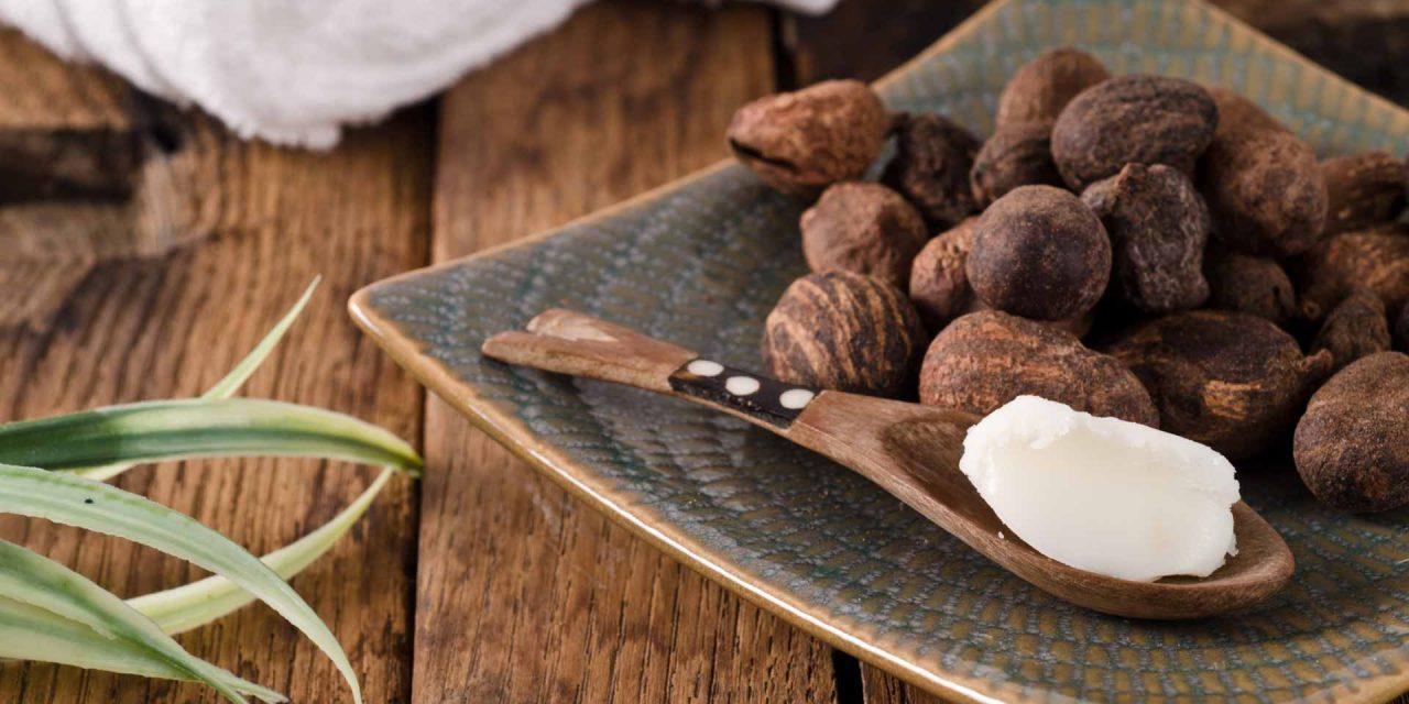 Los beneficios del aceite de karité (shea butter)