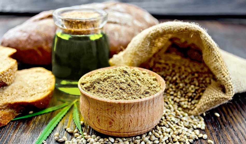 Cannabis – Uso integral para medicina, industria y alimentos