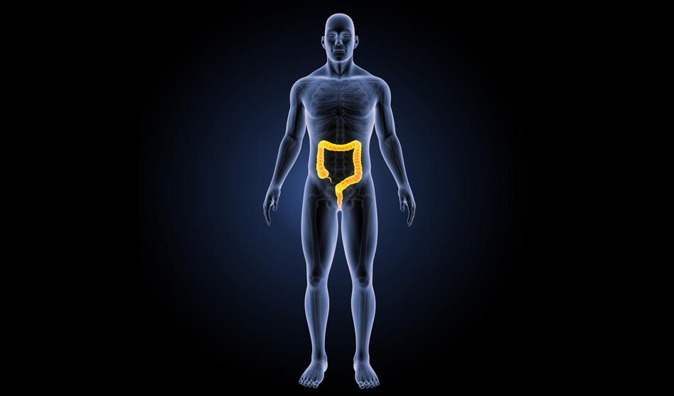 Colonterapia o terapia de colon – Un tratamiento integral