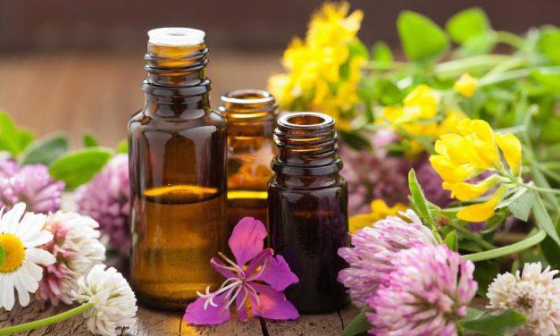 Esencias florales para vivir armónicamente