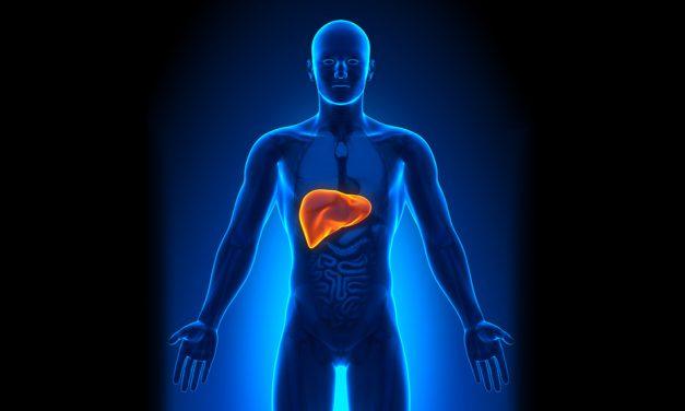 La limpieza hepatobiliar – Salud delicada