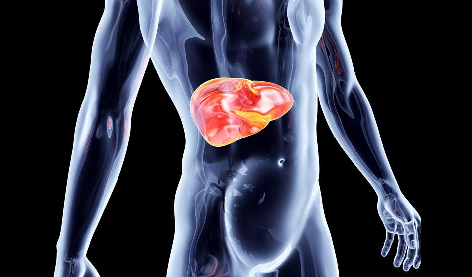 Limpieza hepatobiliar suave